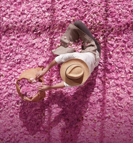 Dior - Miss Dior Nourishing rose hand cream - 4 Open gallery