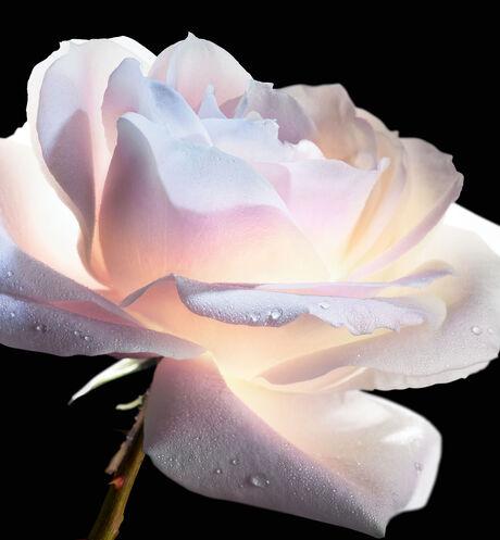 Dior - DIOR精萃再生玫瑰微導眼凝萃 微導賦活、緊緻雙眸、重現亮眼神采 - 4 aria_openGallery